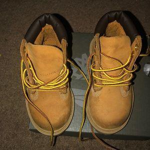 Toddler WheatTimberland Boots BARLEY WORN Size 6C